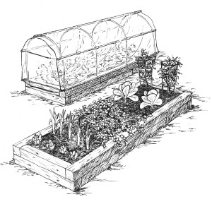 greenhouse with poles