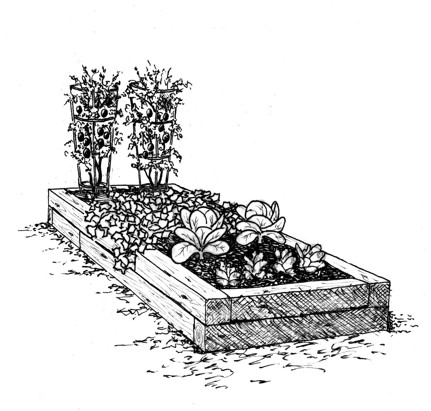 raised garden bed kits