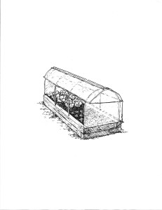 greenhouse with poles-1